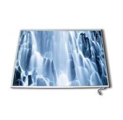"""DALLE NEUVE 20.1"""" pour Dell XPS M2010 et HP HDX9000 series - LP201WE1 - 441791-2B1 - 40pin"""